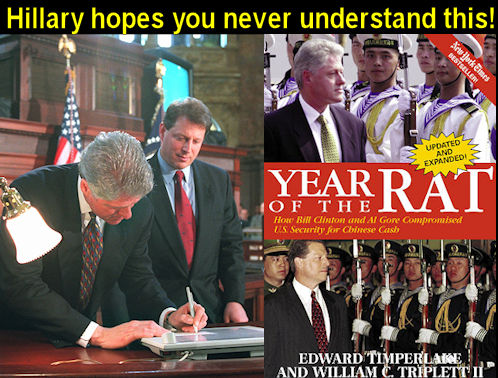 Year of the Rat  Clintons and Gore